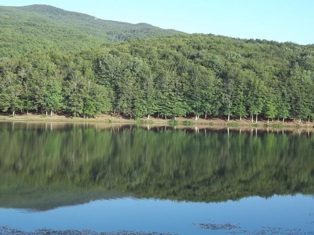 cesaro-nebrodi-lago-maulazzo-e-bosco-bb626ef7-7763-41af-90c8-350e2c33ba6a.jpg